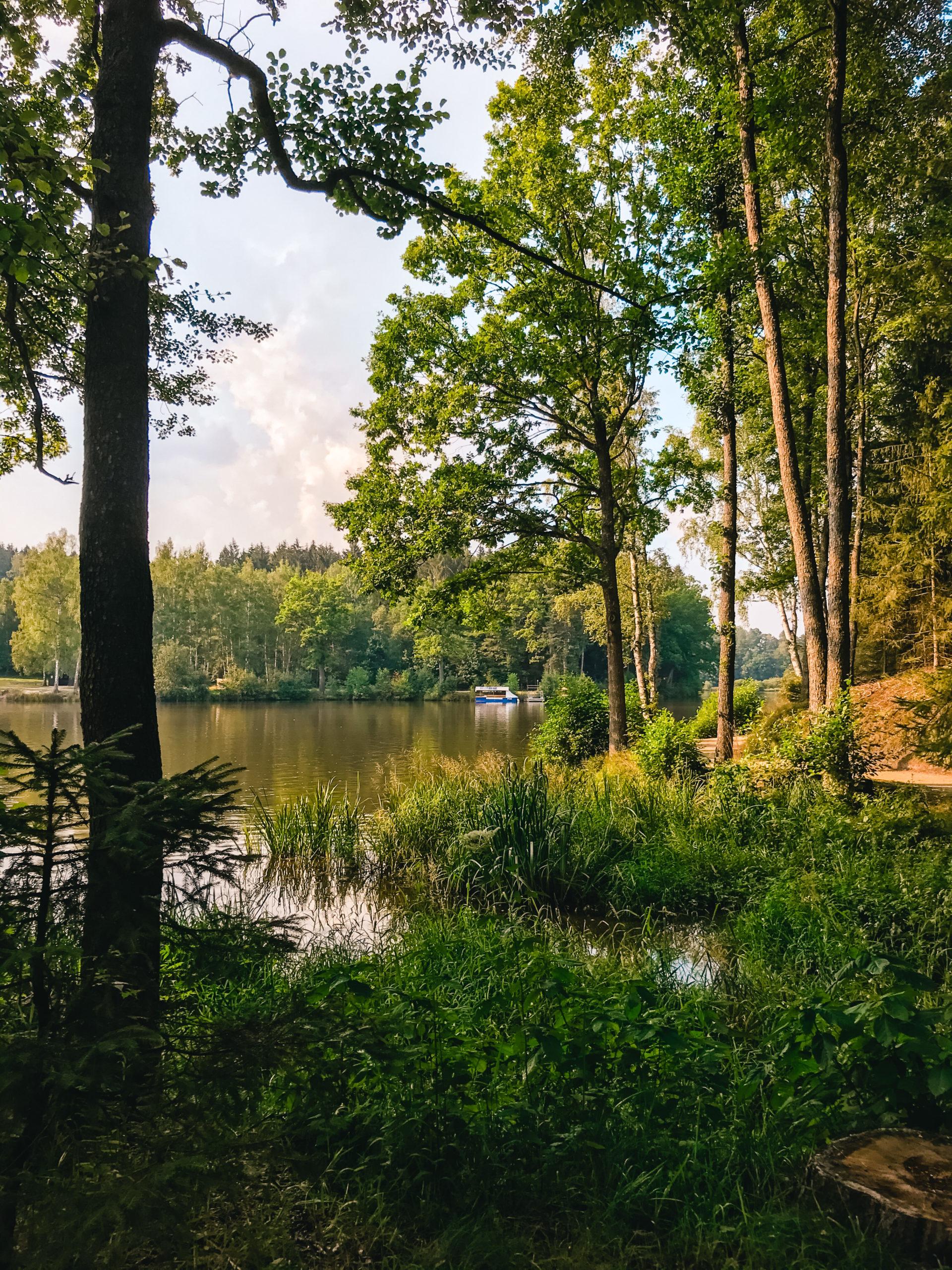 Herrensee in Litschau